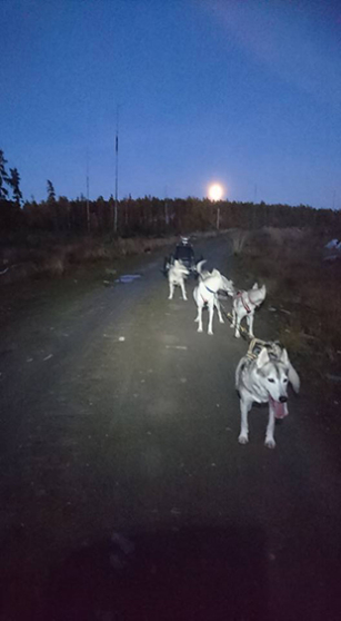 Moon dog sled Lena Bjelfman sky light blog